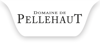 Logo Domaine de Pellehaut